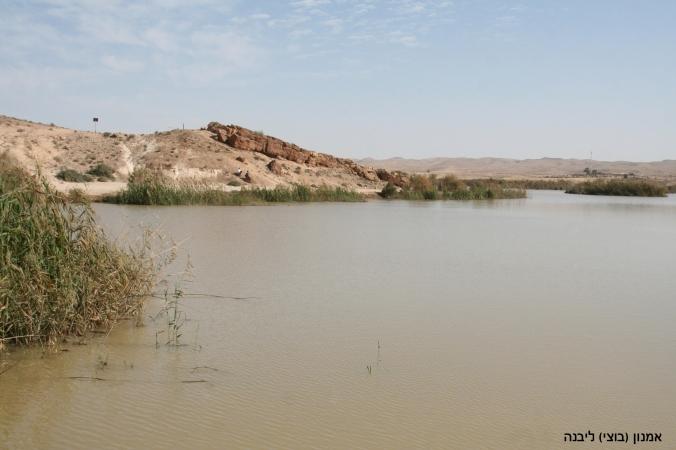 IMG_0155 אגם ירוחםעותק.jpg