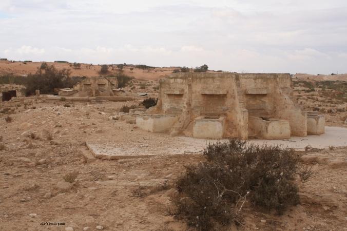 IMG_7387 עסלוג' שרותים קרוסלה