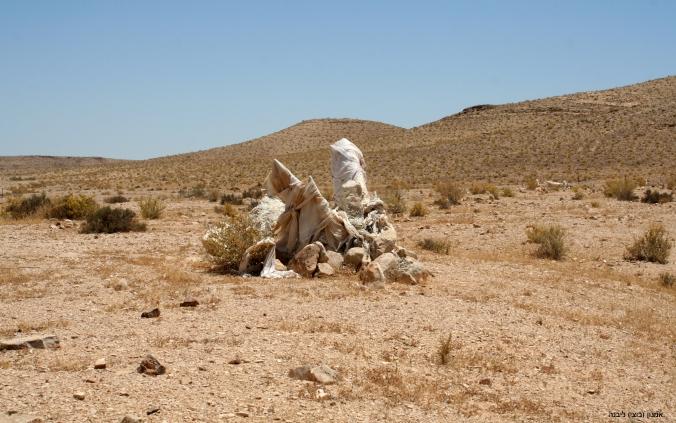 IMG_0982 באר חפיר בית קברותעותק